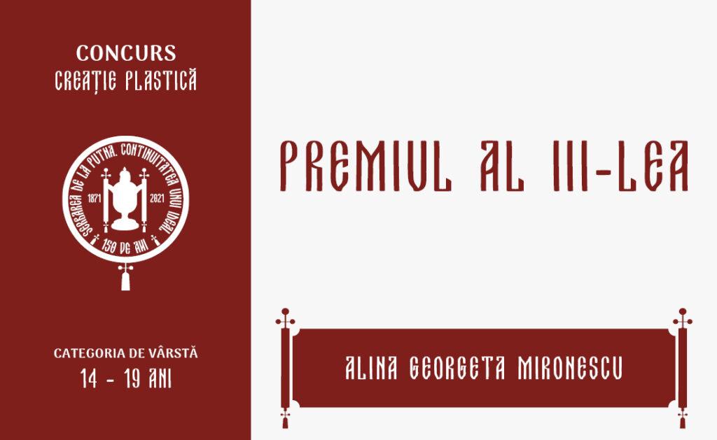Alina Georgeta Mironescu, Premiul al III-lea, Concursul de creație plastică, 14 – 19 ani